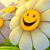 alegre-sempre-alegre
